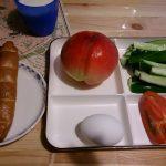 リバウンドしたダイエット(バイオメトリクス)中に私が食べてた食事