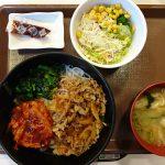 ダイエット97日目の食事